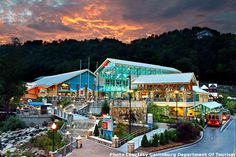 Ripleys-Aquarium-Gatlinburg,Tennessee