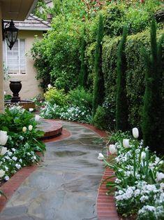 mediterrane Gartengestaltung, Tulpen, Gartenweg