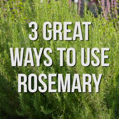 3 Great Ways to Use Rosemary