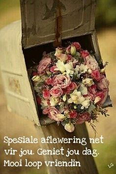 Would love to find this bouquet in my mailbox! But I don't have a mailbox. My Flower, Pretty In Pink, Beautiful Flowers, Romantic Flowers, Simply Beautiful, Deco Floral, Arte Floral, Bloom, Vintage Roses