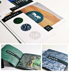 printed brochure design -ecology theme