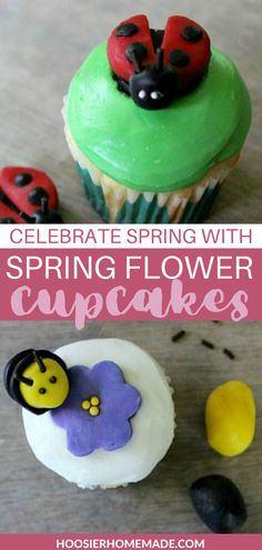 Celebrate Spring with Spring Flower Cupcakes. These are so fun to make and so beautiful you won't even want to eat them! After our long Winter, we are all looking forward to the Spring Flowers, Grass, Trees, Warm Weather and yes even the Bugs. These Spring Flower Cupcakes are a celebration of what Spring has to offer. Try making these cupcakes with the kiddos! #cupcakes #spring #cakedecorating #crafts Easy Cupcake Recipes, Pie Recipes, Dessert Recipes, Desserts, One Bowl Cake Recipe, Homemade Gummies, Cupcake Toppings, Flower Cupcakes, Holiday Cakes