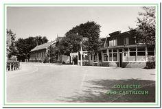 1939: Hotel Borst, Bakkerij Beerse, een manufacturenwinkeltje, de onderwijzerswoning en de School met den Bijbel. Dit was voorheen de tweede Openbare Lagere school.