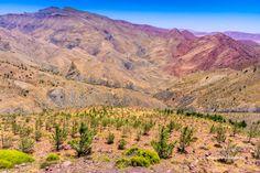 15th  Place - Tichka to Toubkal, Atlas Mountains Morocco