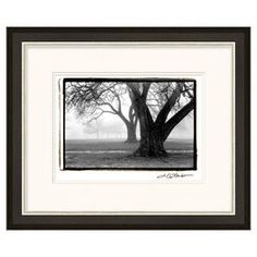 "Framed giclee print of a black and white landscape.  Product: Framed printConstruction Material: Wood and paperColor: Black frameFeatures:  Original artwork by Laura DeNardoMade in the USAReady to hang Dimensions: 22"" H x 26"" W"