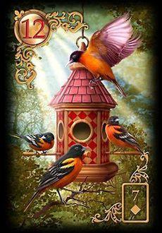 Saiba e aprenda mais sobre as combinações das cartas do Baralho Cigano Lenormand e aprofunde seus conhecimentos na carta Pássaros ou Corujas.