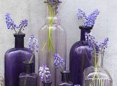 44 Loveliest Lavender Wedding Details colored flowers in same colored antique glass bottles. what a great impact! The post 44 Loveliest Lavender Wedding Details appeared first on Diy Flowers. Lavender Wedding Theme, Wedding Colors, Wedding Flowers, Lavender Decor, Lavender Hair, Lavender Ideas, Purple And Green Wedding, Lavender Weddings, Provence Lavender