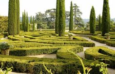 Perhaps not a maze strictly but this parterre with vast shooting columns reeks of 17th century gardening glory. Château de Sannes. Provence.