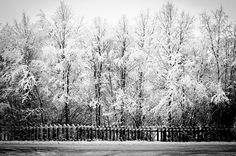 Winter Karasjok