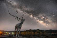 天への祈り | 自然・風景 > 宇宙・天体 | GANREF | 3.11被災地の石巻市にある鹿のオブジェ。とても綺麗な星空が迎えてくれました! Silent Prayer, Prayers, Mountains, Nature, Travel, Naturaleza, Trips, Traveling, Beans Recipes