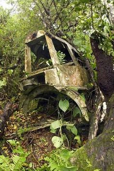 What looks like the skeleton of a truck was actually once a plane. What we can see here are the tail, elevators, rudder and the tail gunner of a plane used in World War II and crashed in Guam.