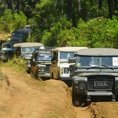 Land Rover Series expedition.