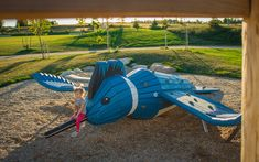 Custom Themed Kingfisher Bird Sculpture in Westmount Sports Park, Waterloo. Kingfisher Bird, Sport Park, Natural Playground, Site Plans, Environmental Education, Outdoor Learning, Parking Design, Bird Sculpture, Natural Materials