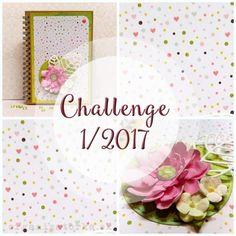 Challenge 1/2017