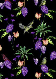 Tropical Bird Pattern/Print by Sophie Pollard.  Leaves, botanicals and birds