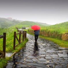 Rain by Pilar  Azaña, via 500px