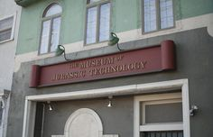the museum of jurassic technology - 100 museums to visit before you die