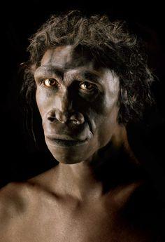Homo Ergaster  « l'homme artisan » a vécu en Afrique il y a 1,8 à 1 million d'années.