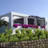 PyB ibiza holidays, Ibiza, the villa