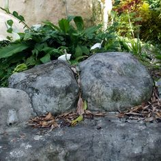 Picture of Trash Rocks I Have Known Cement Leaves, Fake Stone, Mermaid Room, Go Green, Garden Landscaping, Stepping Stones, Rocks, Landscape, Outdoor Decor