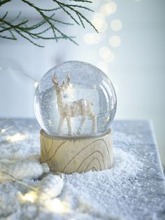 Deer Snowglobe NEW - Decorations - Christmas