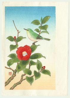 Original Shizuo Ashikaga (active circa 1950s) Japanese Woodblock Print   Bird on a Flowering Camellia Branch