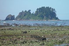 Bodelteh islands.  Westernmost point in the lower 48. I wonder if there's a non-technical route to the top?