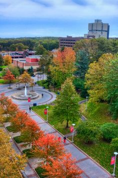 Stony Brook Scores Impressively in New US News Global Rankings Stony Brook University, New Uses, Medical School, Scores, The 100, Colleges, Water, Outdoor, York