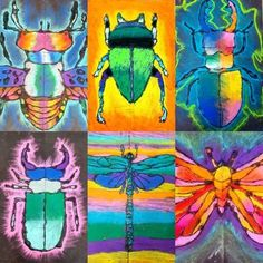 I'm buggin' out over here you guys… look at these grade chalk insects! C… I'm buggin' out over here you guys… look at these grade chalk insects! Symmetry Art, Oil Pastel Art, Oil Pastels, Chalk Pastels, 2nd Grade Art, Arts And Crafts Movement, Ecole Art, Insect Art, School Art Projects