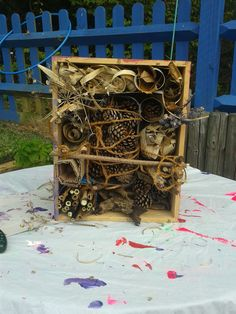 Bug hotel! Wine box, pine cones; bamboo sticks and leaves; bark; cardboard; water bottles; lavender bundles and twigs..The kids loved making this!