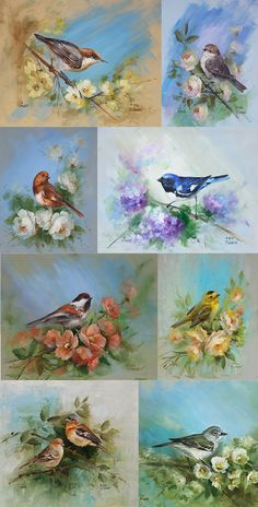 A Garden of Birds Vol 3 Art of Painting SeriesPrinted is part of B A Garden Of Birds Vol Art Of Painting Series Printed - generation art supplies and instruction from our internationally honored instructors Bird Painting Acrylic, China Painting, Watercolor Bird, Fabric Painting, Painting & Drawing, Garden Painting, Pencil Drawing Images, Bird Illustration, 3 Arts
