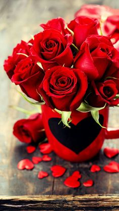 Flowers Gif, Flowers For You, Pretty Flowers, Beautiful Rose Flowers, Love Rose, Beautiful Flowers Hd Wallpapers, Single Red Rose, Red Rose Bouquet, Luxury Flowers