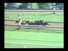 1988 Lexington Stakes - Risen Star -vs- Forty Niner