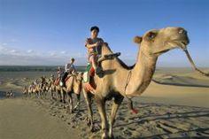 La Ruta de la Seda. Una caravana de camellos en las dunas de la Montañas del Eco, cerca de Dunhuang, en provincia china de Gansu. / XIE HUANG HUI. Mochilero, el mundo es tuyo   El Viajero en EL PAÍS Lonely Planet, Places Around The World, Around The Worlds, Dunhuang, Fantasy Fiction, Silk Road, Places To Travel, Culture, Adventure