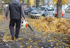 Leaf blowers can make easy work of a time-consuming fall task. We have the details on the best blowers for your yard here. Lawn And Garden, Garden Tools, Sweeper Truck, Yard Maintenance, Bob Vila, Easy Work, Holiday Movie, Best Rated, Leaf Blower