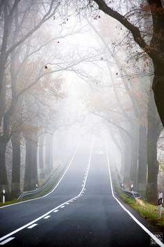 Foggy Road ⤧ by Gep Chroszcz Cool Pictures, Cool Photos, Beautiful Pictures, Beautiful World, Beautiful Places, Beautiful Scenery, On The Road Again, Pathways, The Great Outdoors