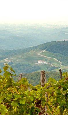 Als je kiest voor een autovakantie in Slovenië kan je rekenen op panoramische ritten over bergpassen, door wijngaarden, middeleeuwse dorpjes en eindeloze bossen en langs rivieren, meren en zee. Maar hoe plan je autovakantie in Slovenië? Lees de artikel! @MijnSlovenie