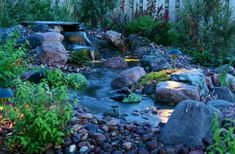 A stream-like pond with a small waterfall, edged by small stones and larger boulders. Small mushroom-shaped lights add unique ambiance at night. Small leafy plants, ground cover, and taller bushes surround the water feature. Landscaping With Fountains, Pond Landscaping, Superior Landscaping, Small Backyard Ponds, Small Ponds, Garden Ponds, Koi Ponds, Landscape Design, Garden Design