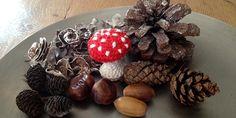 Laatst hebben we een leuke wandeling in het bos gemaakt. We hebben een tas vol spullen meegenomen uit het bos, maar ja, die paddenstoelen die laat je natuurlijk staan. Dus daarom heb ik maar een... Crochet Mushroom, Crochet Flowers, Diys, Stuffed Mushrooms, Projects To Try, Knitting, Creative, Stuff Mushrooms, Bricolage