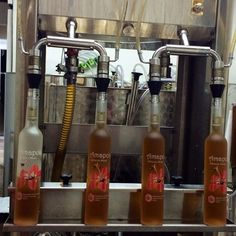 Bottling Amapola - a sweet mead with hibiscus - at Costa Rica Meadery