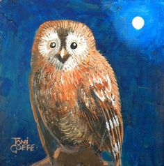 """""""Another Tawny Owl"""" art by Toni Goffe"""