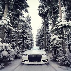 There's just nothing quite like playing in a #AudiA4 in woods, in the snow! It really is the most #wonderful time of the year!!