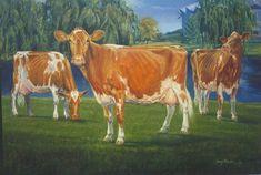 Dairy Queens - Guernsey cows