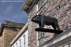 The Bristling Hog, Kendal, Cumbria
