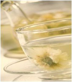 국화차 Chrysanthemum tea, popular in East Asia. Good for skin and eyes.
