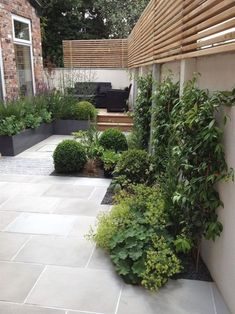 Small Courtyard Garden Design Inspiraions 35 image is part of Inspiring Small Courtyard Garden Design for Your House gallery, you can read and see another amazing image Inspiring Small Courtyard…MoreMore #GardeningDesign