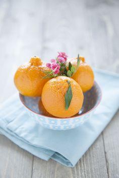100% Végétal: Un peu de couleur : Fenouil aux mandarines et oseille.