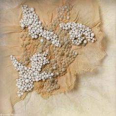 Today's inspiration comes from Emmanuelle DuPont. Her microcosm pieces are small bead + fiber pieces that boast incredible textures. It makes me want to layer on beads and stitches to my weaves just like I do with my necklaces! Textile Texture, Textile Fiber Art, Fabric Textures, Textile Artists, Textures Patterns, Techniques Textiles, Fabric Manipulation Techniques, Collage Techniques, Design Textile