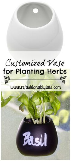 Mini Vase Makeover...Never forget to water your herbs again!  - www.refashionablylate.com