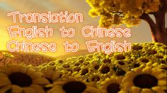 vivian880830: translate Chinese into English and English to Chinese for one gig, on fiverr.com